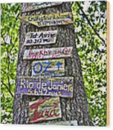 Signs On A Tree Wood Print