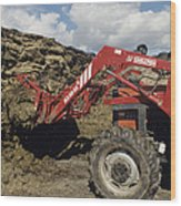 Silage Heap Wood Print