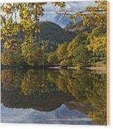 Silent Wood Print
