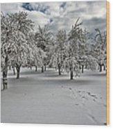 Silent Winter Wood Print