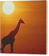Silhouette Of A Giraffe At Sunrise Wood Print