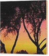Silhouette Of Autumn Wood Print