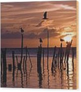Silhouette Of Seagulls On Posts In Sea Wood Print