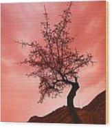 Silhouette Of Shrub Tree Wood Print