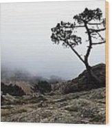 Silhouette Of Tree In Mist Wood Print