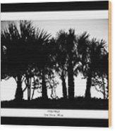 Silhouette Palm Sunset Wood Print