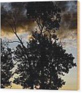 Silhouette Sunset Wood Print