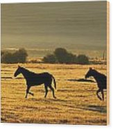 Silhouetted Horses Running Wood Print