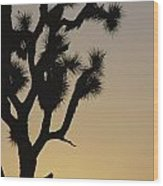 Silhouetted Joshua Tree In Antelope Wood Print