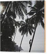 Silhouetted Man Climbing A Palm Tree To Wood Print