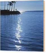 Silhouetted Plams IIi Wood Print