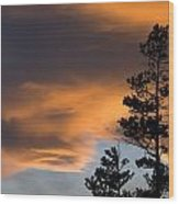 Silhouetted Tree At Sunset Wood Print