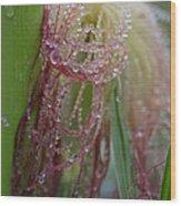 Silk And Pearls Wood Print