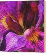 Silk And Satin Wood Print