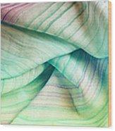 Silk Scarf Wood Print