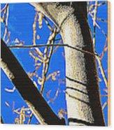Silk Tree Wood Print