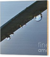 Silky Droplet Wood Print