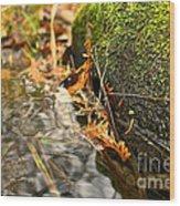 Silky Water Wood Print