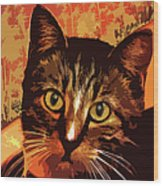 Silly Cat Wood Print