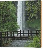 Silver Falls 2 In Oregon Wood Print