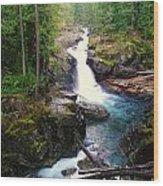 Silver Falls Full View  Wood Print