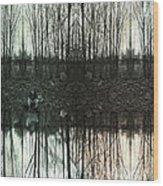 Silver Lake Wood Print