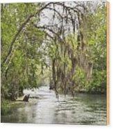 Silver Springs River In The Rain 2 Wood Print