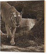 Simba 1 Wood Print