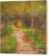 Simple Pathways Wood Print