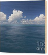 Simplicity Great Barrier Reef Wood Print