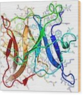 Sindbis Virus Capsid Protein Wood Print