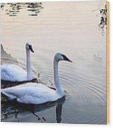 Sing Of White Swan Wood Print