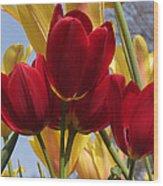 Single Late Red Georgette Wood Print
