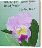 Single Pink Orchid Ps. 86v12 Wood Print