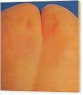 Single Ripe Apricot Wood Print by Sami Sarkis