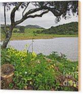 Sintra Landscape Wood Print