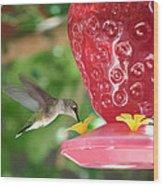 Hummingbird Sipping Wood Print