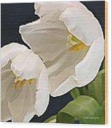 Sisters In White Wood Print