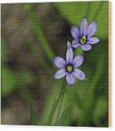 Sisters Of The Purple Plants Wood Print