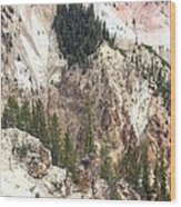 Sit For A Spell At Grand Canyon In Yellowstone Wood Print