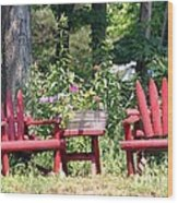 Sit For Awhile Wood Print
