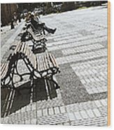 Sitting In The Park - Madrid Wood Print