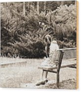 Sitting On The Bench Wood Print