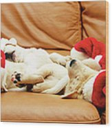 Six Puppies Sleep On Sofa, Some Wear Santa Hats Wood Print