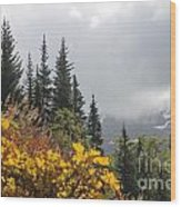Skagway Alaska 2 Wood Print