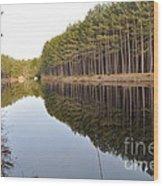 Skinny Trees Wood Print