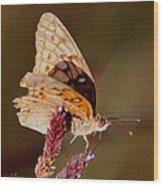 Skipper Wood Print