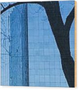 Sky Scraper Tall Building Abstract With Windows Tree And Reflections No.0066 Wood Print