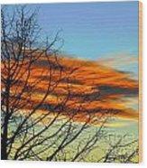 Sky Scratcher Wood Print