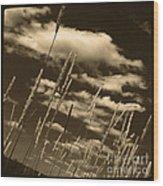 Sky Writer Wood Print